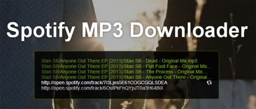 MP3 downloaden van Spotify